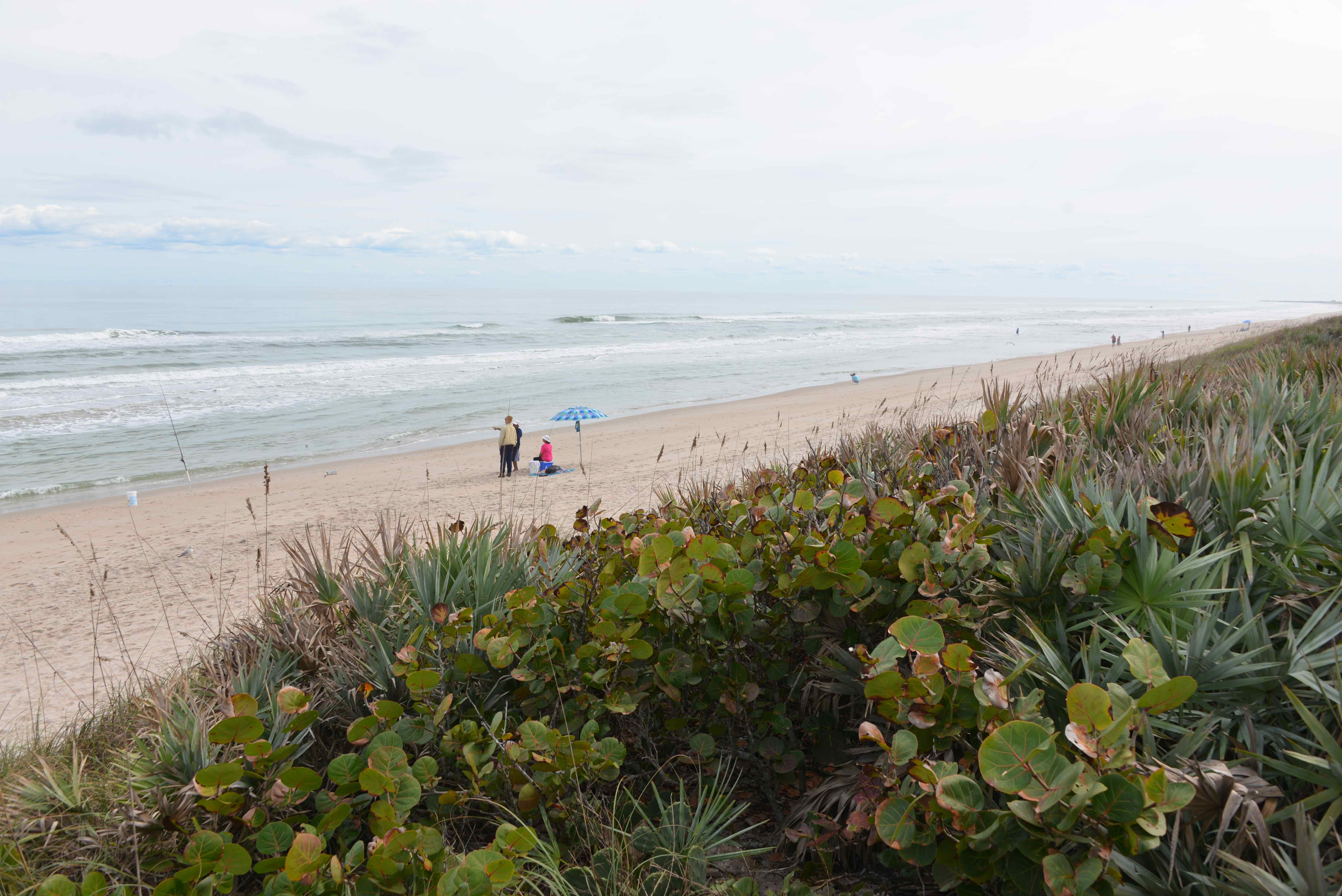 Cape Canaveral National Seashore