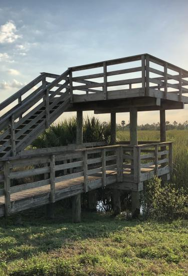 An observation deck at the Ritch Grissom Memorial Wetlands in Viera, FL