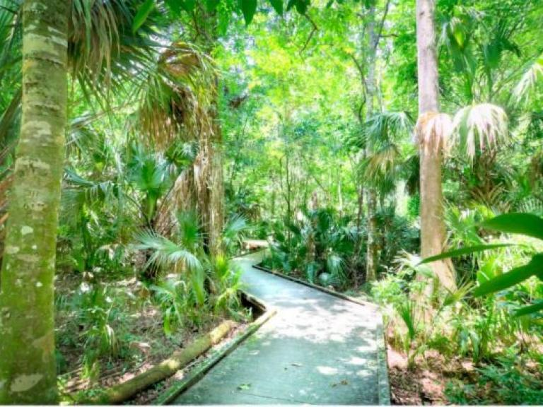 Enchanted Forest Sanctuary in Titusville, Florida