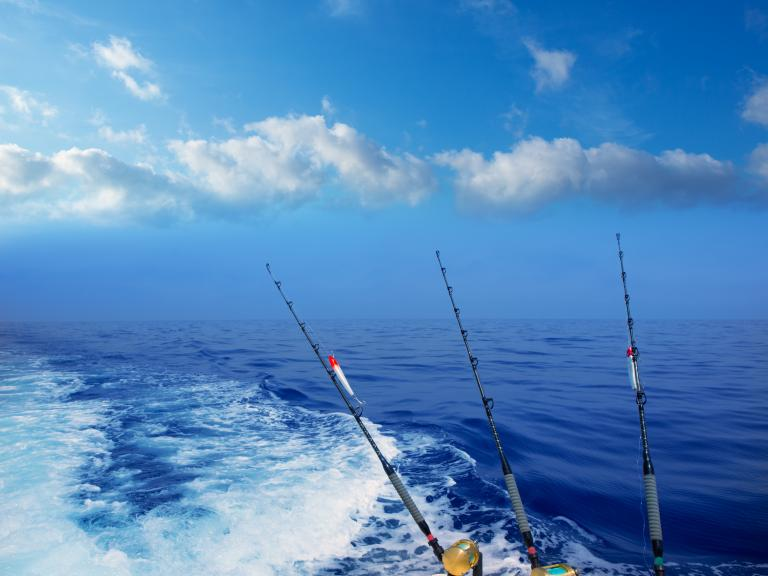 Deep sea fishing in the Atlantic Ocean with Sea Leveler Sport Fishing Charters in Port Canaveral