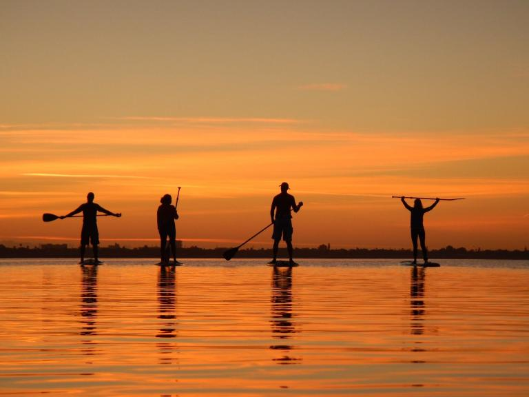 A group of people stand-up paddleboard at sunset on the Indian River