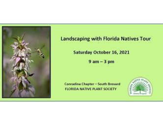 Landscaping with Florida Natives flyer