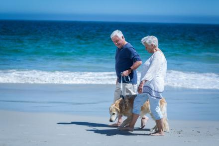 An older couple walks their dog down the beach