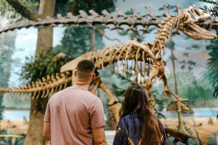 A couple looking at a life-size dinosaur skeleton at the Museum of Dinosaurs and Ancient Cultures at The Dinosaur Store in Cocoa Beach