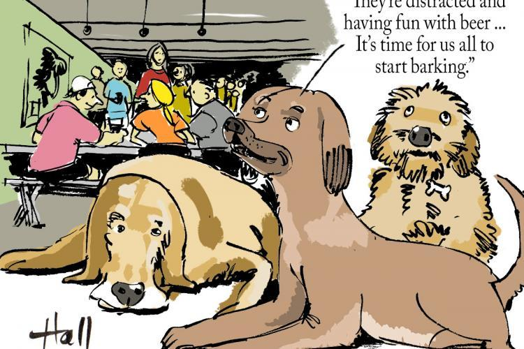 Steve Hall cartoon - Dogs in the brewpub