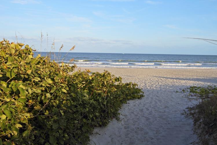 Serene Beaches of Florida's Space Coast